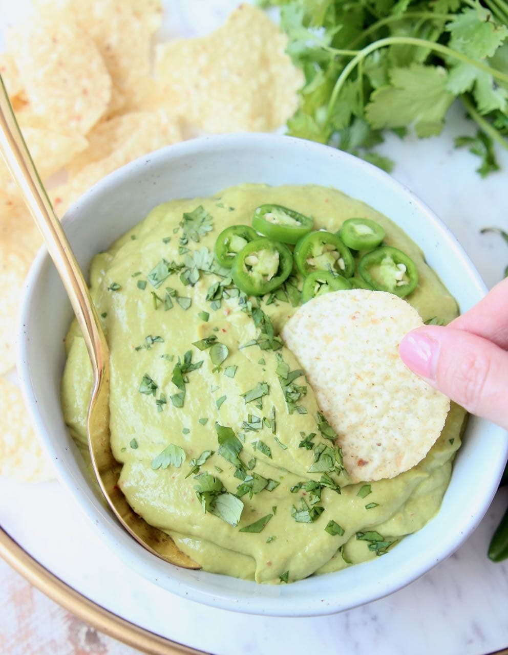 Tortilla chip being dipped into a bowl of avocado salsa