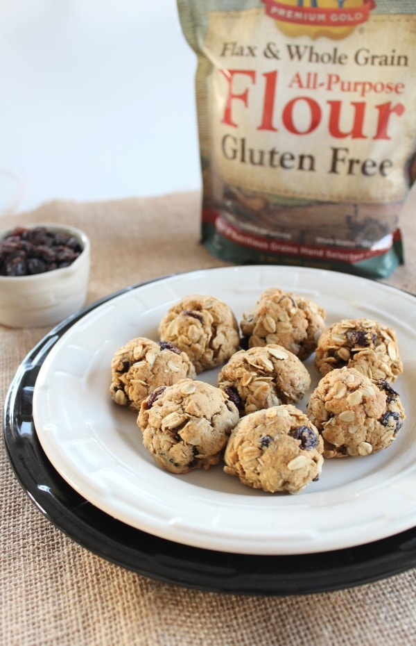 Premium Gold Gluten Free Oatmeal Raisin Cookies