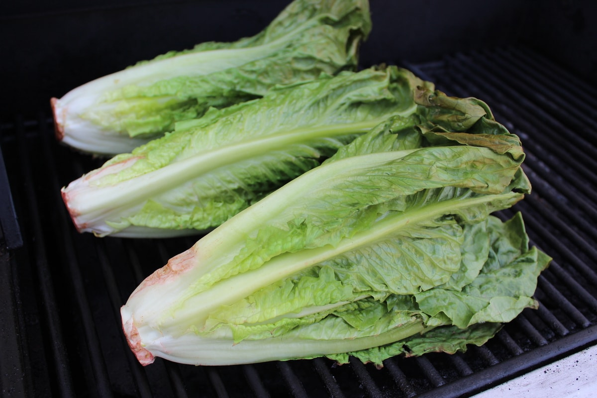 Grilled Romaine Lettuce - Little Leopard Book
