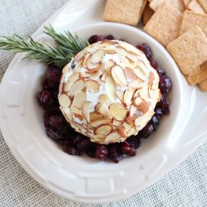 Cranberry Goat Cheese Ball
