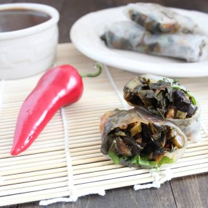 Sriracha Soy Vegetable Spring Rolls