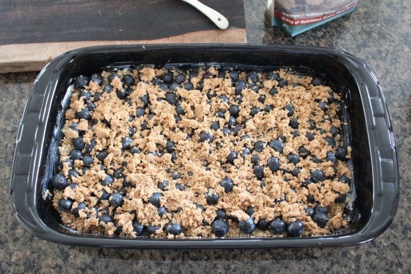 Gluten Free Blueberry Oat Bar Recipe