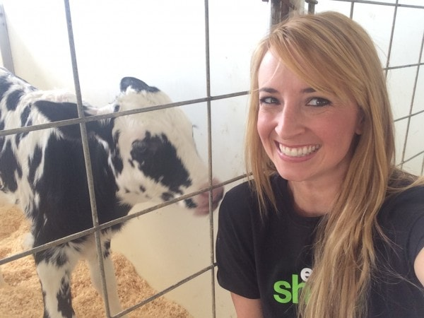 Whitney Bond with the Cabot Fit Cows