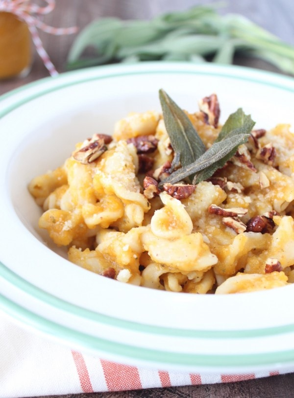 Butternut Squash Pasta Recipe