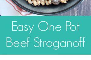 Easy One Pot Beef Stroganoff Recipe