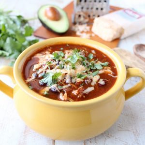 Slow Cooker Spicy Chicken Enchilada Soup