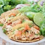 Pressure cooker chicken tacos in corn tortillas on white plate with cilantro and limes