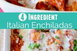 Enchiladas in baking dish