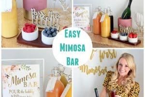 Collage of images of a mimosa bar