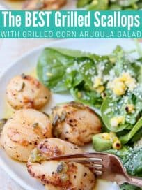 Grilled scallops on plate with salad