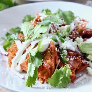 chilaquiles on plate topped with cilantro and cheese
